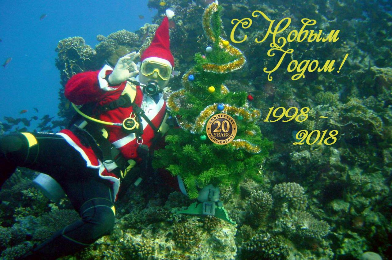 дайвинг клуб 20 лет под водой