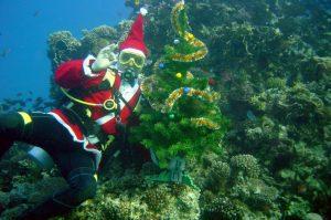 Дед Мороз под водой - Андрей Лихачев