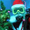 Подводный Дед Мороз - Лихачев Андрей