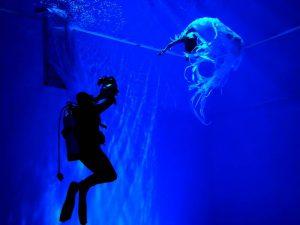 подводные съемки клипа, работа с моделью, Лихачев Андрей
