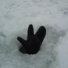 ice_2006_1_0