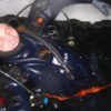 ice_2006_1_24